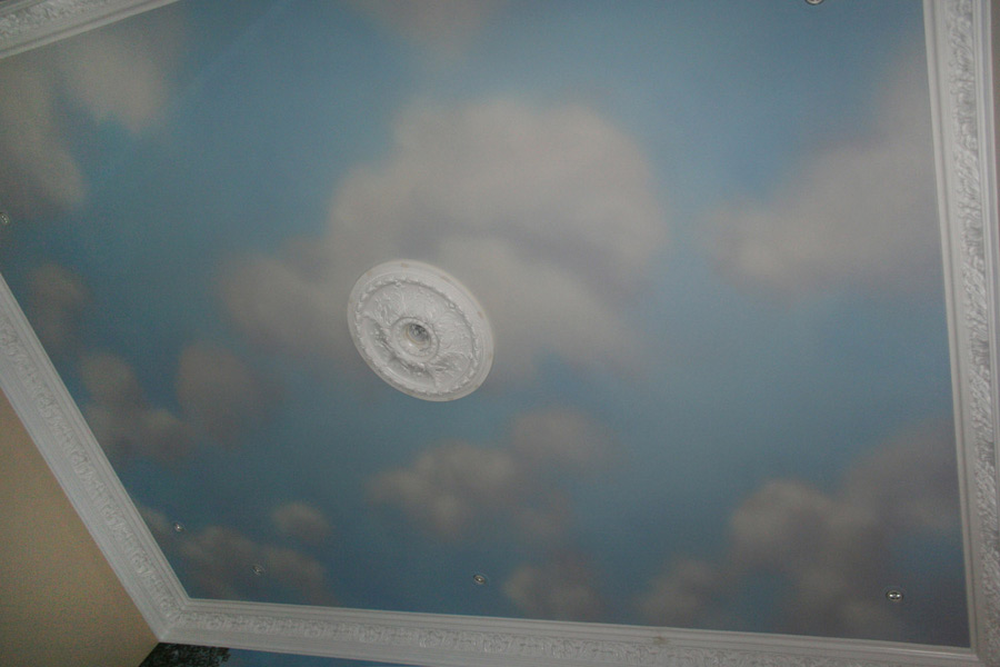 Paintings by elizabeth scott in oil and acrylic for Cloud mural ceiling